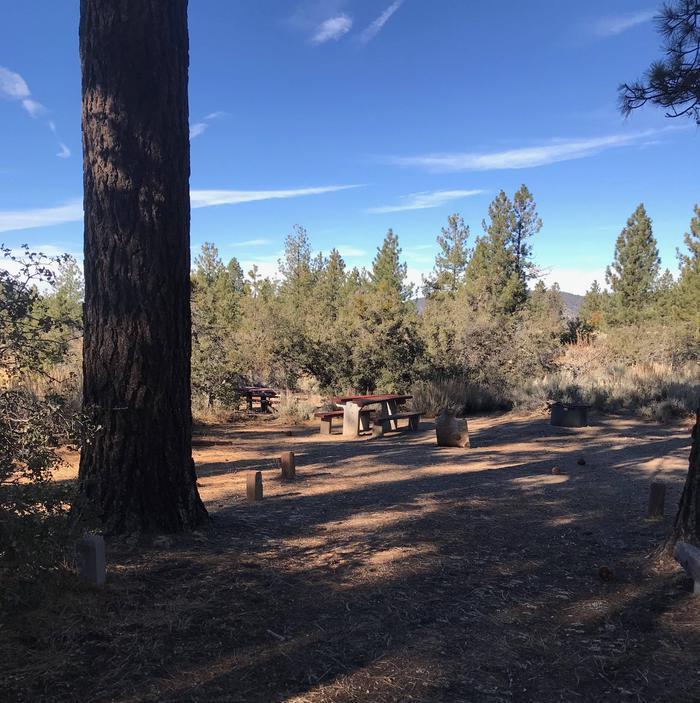 Chuchupate CampgroundSite 28