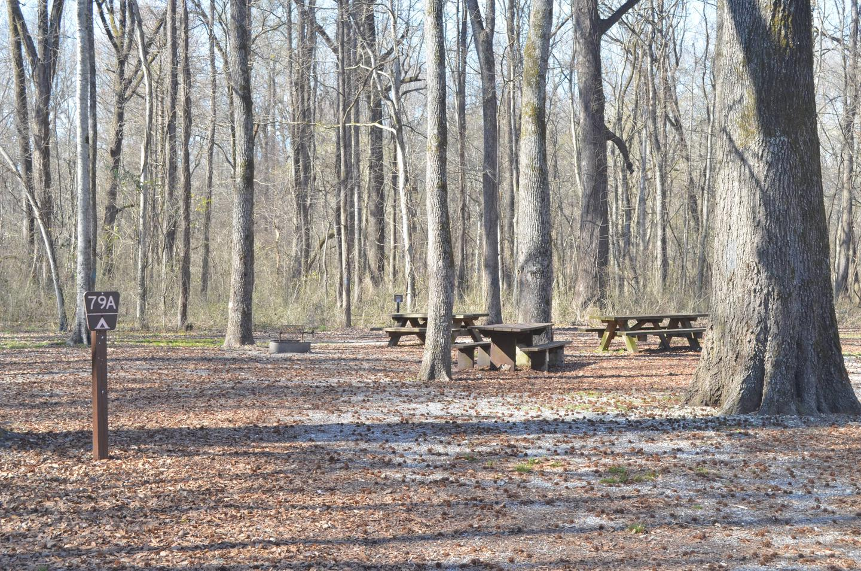 Blue Lake Campsite 79A