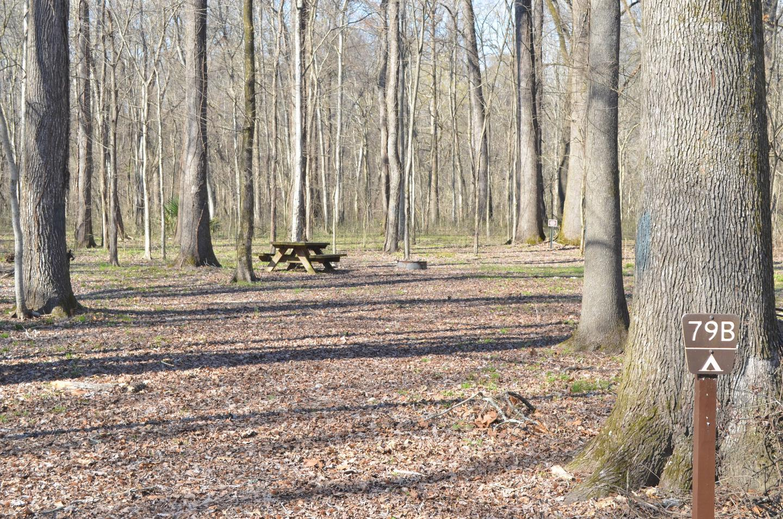 Blue Lake Site 79B