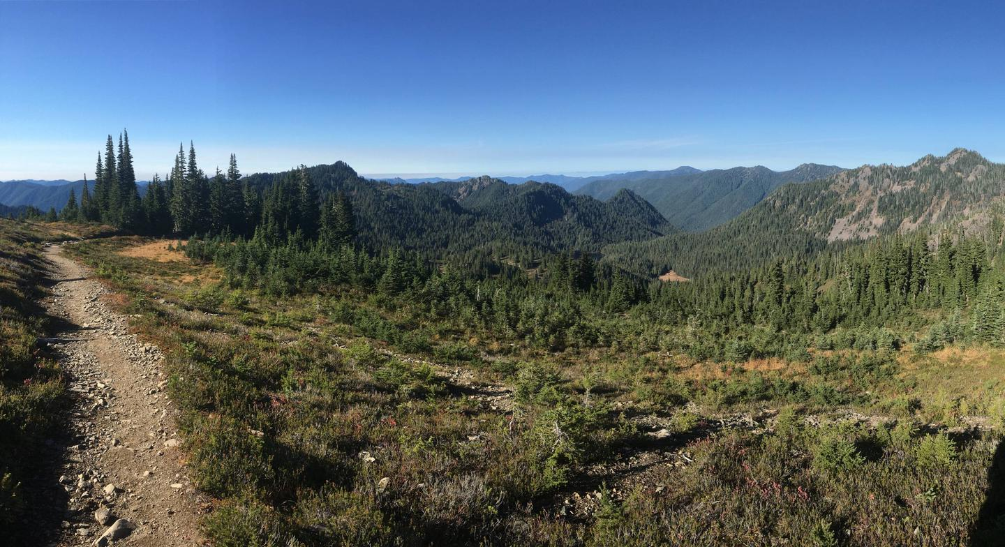 View looking out at a meadow and a forested valley in the distance.High Divide Trail above Deer Lake