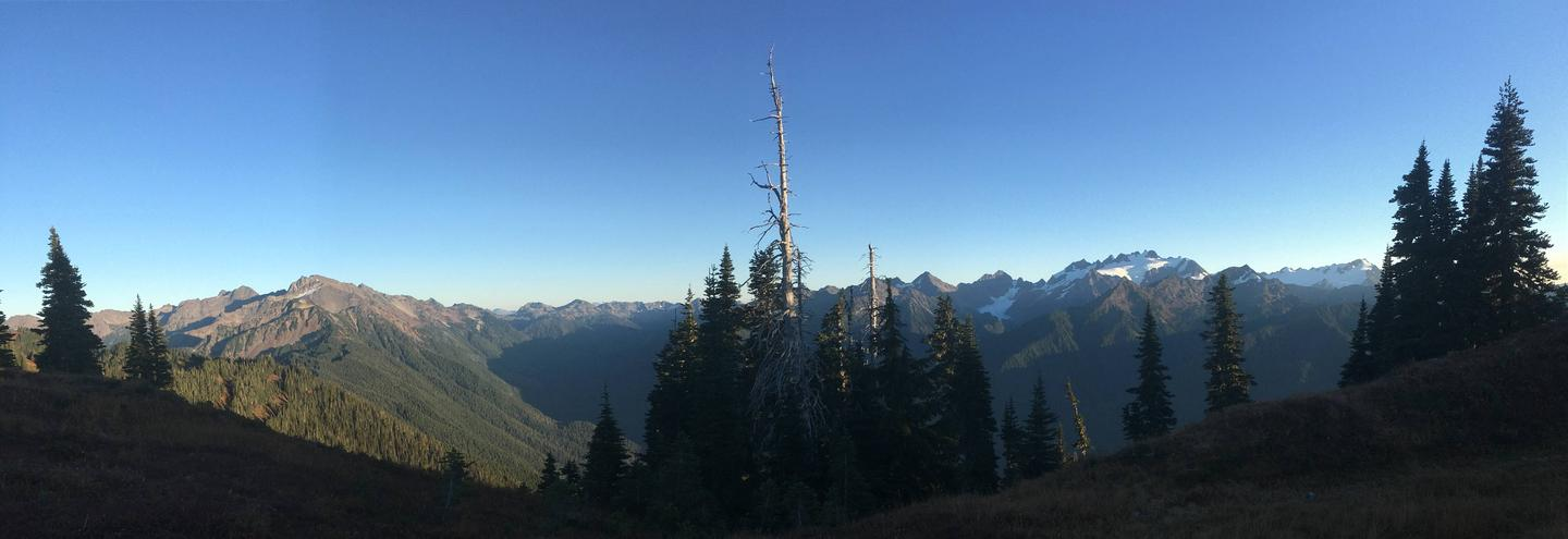 View of mountains and forest at sunset.High Divide