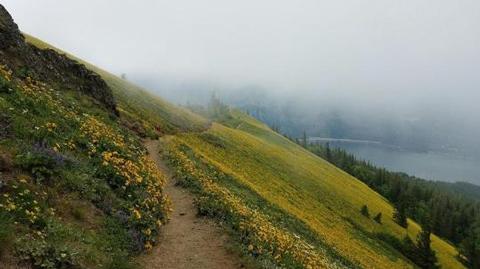 Dog Mountain Trail System Permit