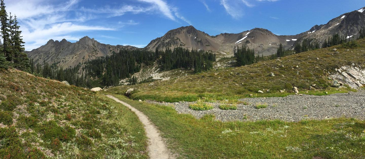 Subalpine meadow surrounded by mountain peaks Royal Basin