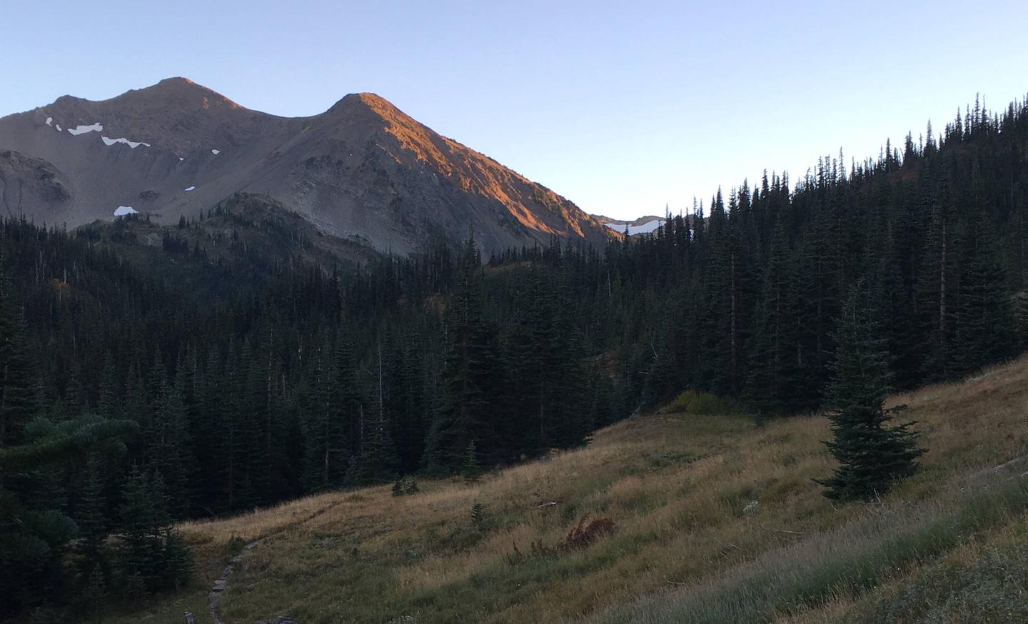 Subalpine meadow surrounded by mountain peaks and forestGrand Valley