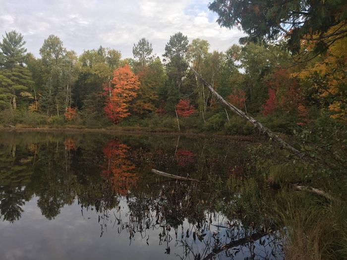 Fall colors reflected in Twin Lake