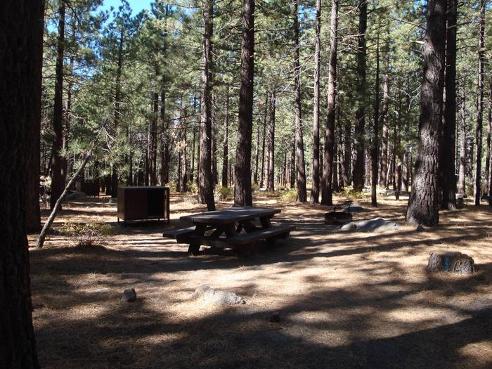 New Shady Rest Campground SITE 108