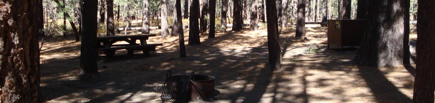 New Shady Rest Campground SITE 109