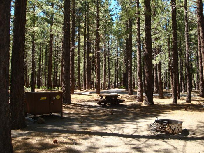 New Shady Rest Campground SITE 110