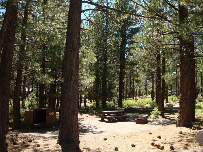 New Shady Rest Campground SITE 114