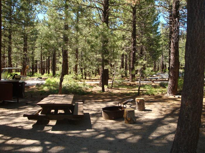 New Shady Rest Campground SITE 117