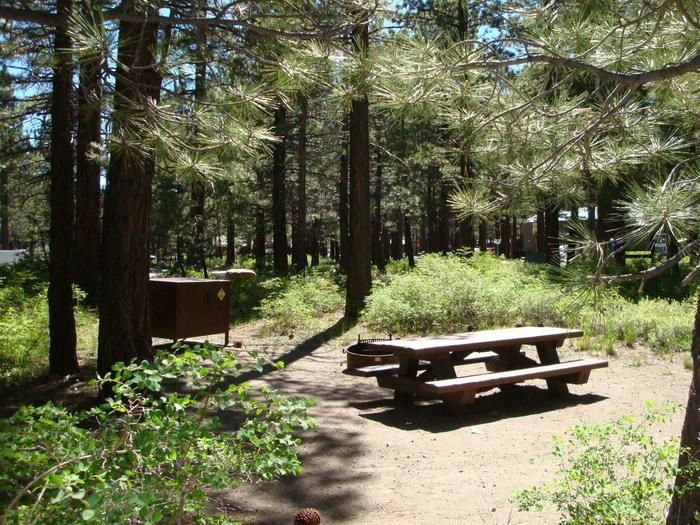 New Shady Rest Campground SITE 118