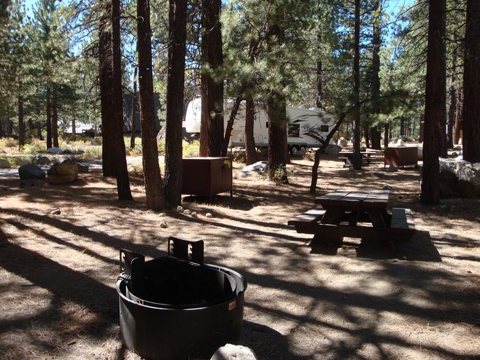 New Shady Rest Campground SITE 125