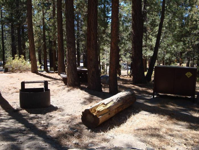 New Shady Rest Campground SITE 126