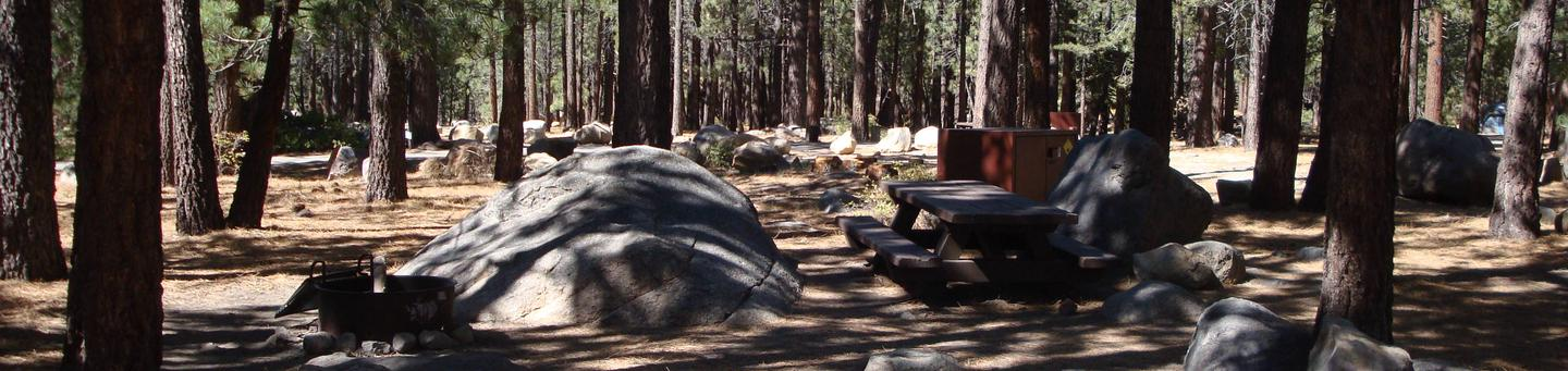 New Shady Rest Campground SITE 128