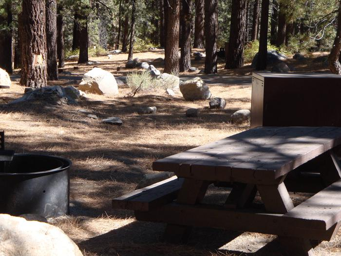 New Shady Rest Campground SITE 130