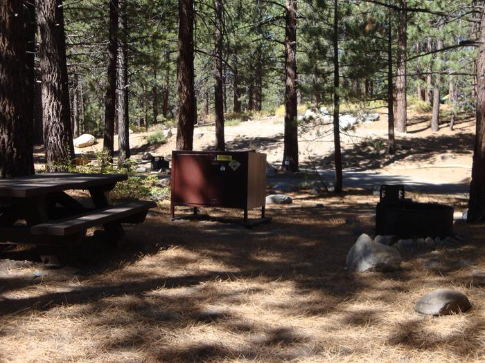 New Shady Rest Campground SITE 133