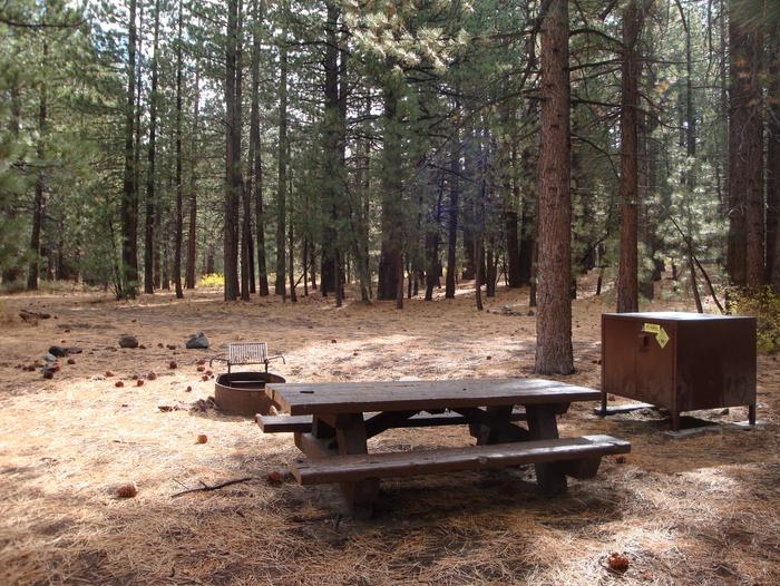 New Shady Rest Campground SITE 138