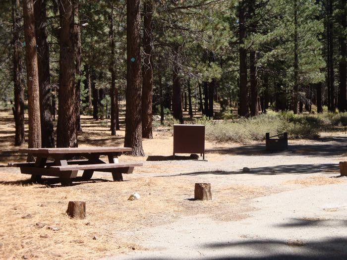 New Shady Rest Campground SITE 139