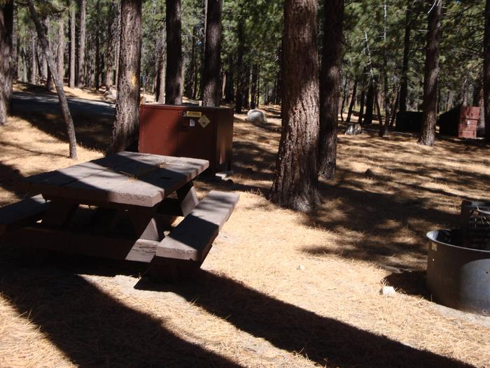 New Shady Rest Campground SITE 141