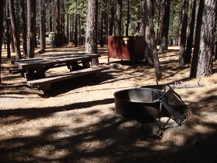 New Shady Rest Campground SITE 144
