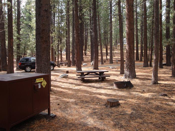 New Shady Rest Campground SITE 145