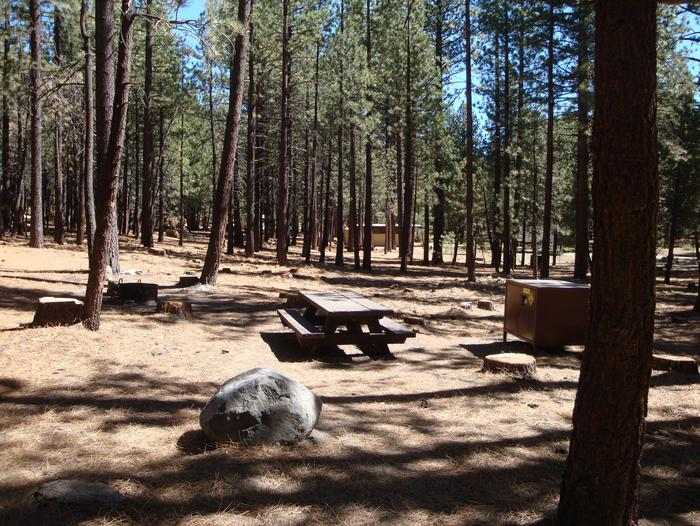 New Shady Rest Campground SITE 146