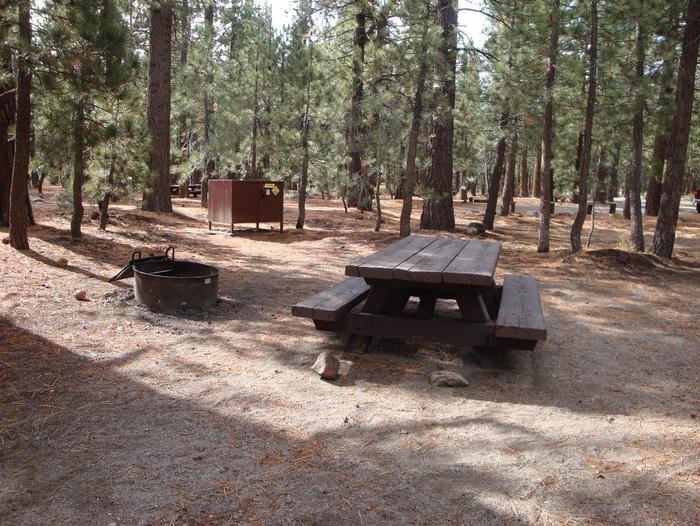 New Shady Rest Campground SITE 151