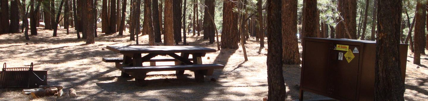 New Shady Rest Campground SITE 155