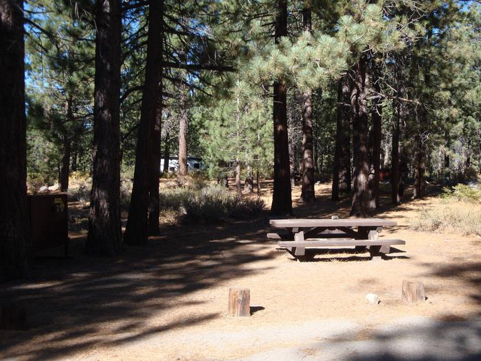 New Shady Rest Campground SITE 156