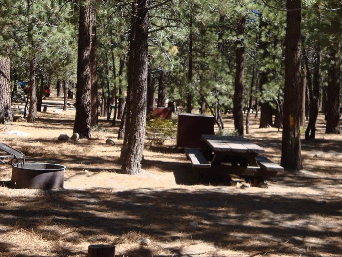 New Shady Rest Campground SITE 157