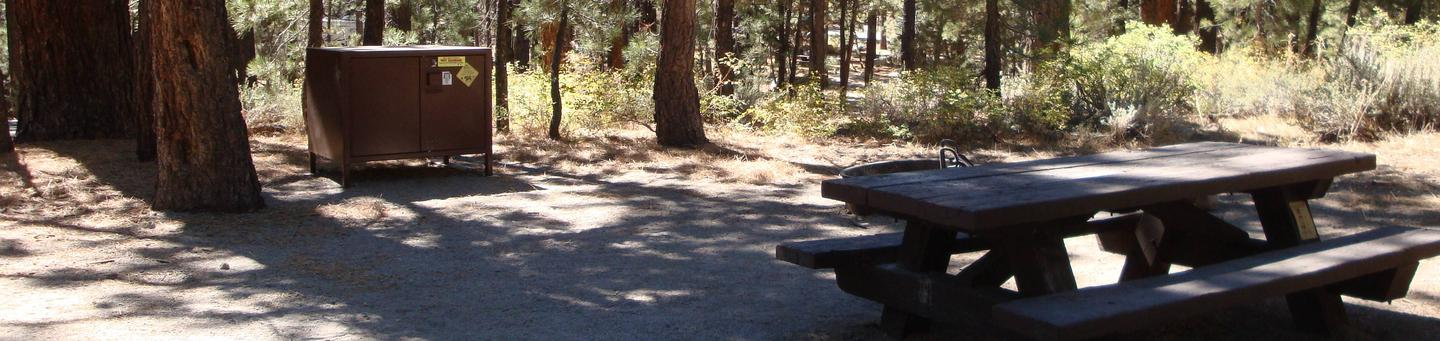 New Shady Rest Campground SITE 158