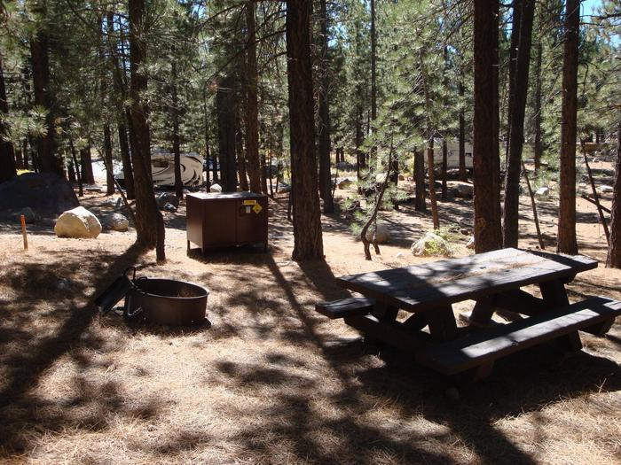 New Shady Rest Campground SITE 159