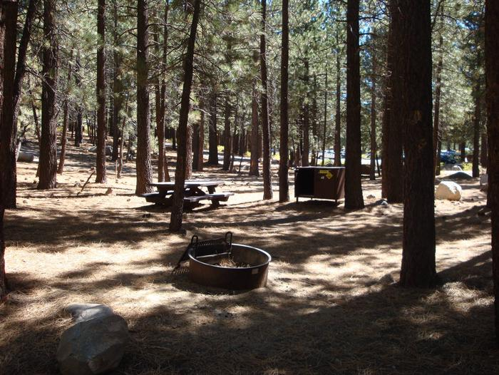 New Shady Rest Campground SITE 161