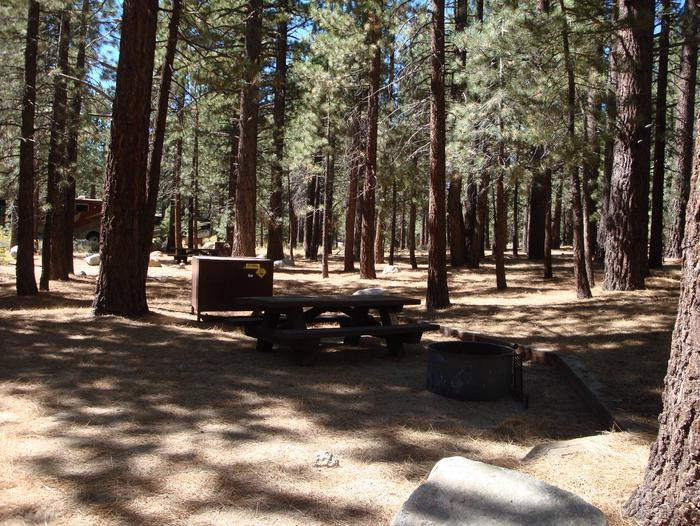 New Shady Rest Campground SITE 162