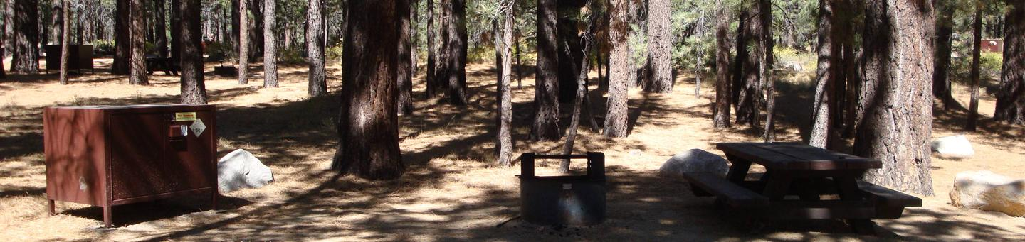 New Shady Rest Campground SITE 163