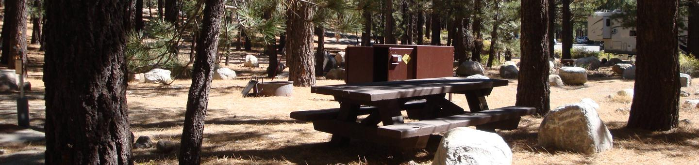 New Shady Rest Campground SITE 164