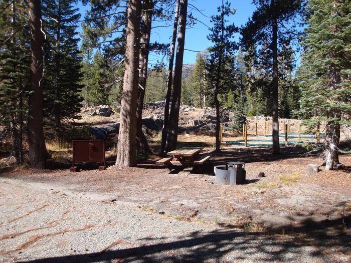 Agnew Horse Camp 14