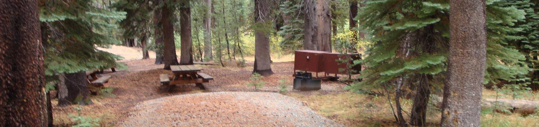 Agnew Horse Camp 15