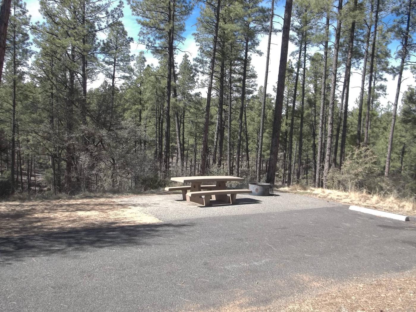 Hilltop Campground Campsite 9
