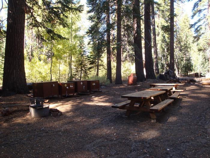 Agnew Group Campground SITE 1