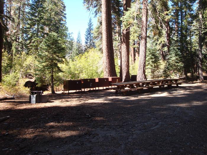 Agnew Group Campground SITE 2