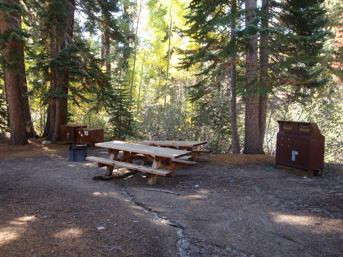 Agnew Group Campground SITE 3