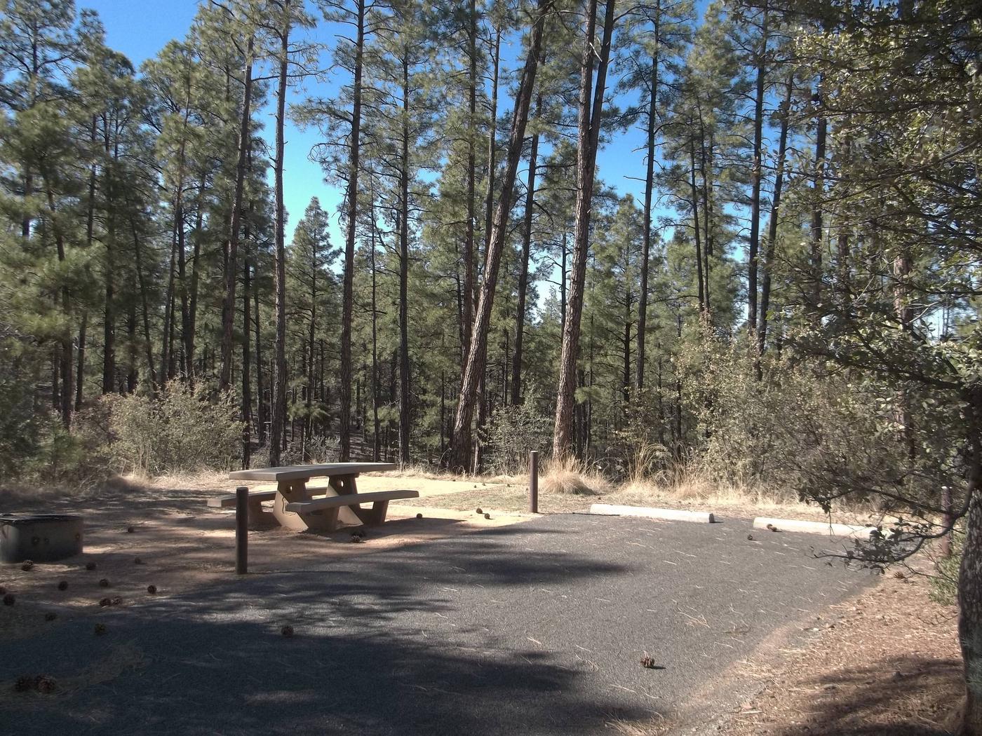 Hilltop Campground Campsite 36