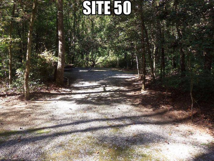 Lake Rabun Beach Recreation Area Site 50