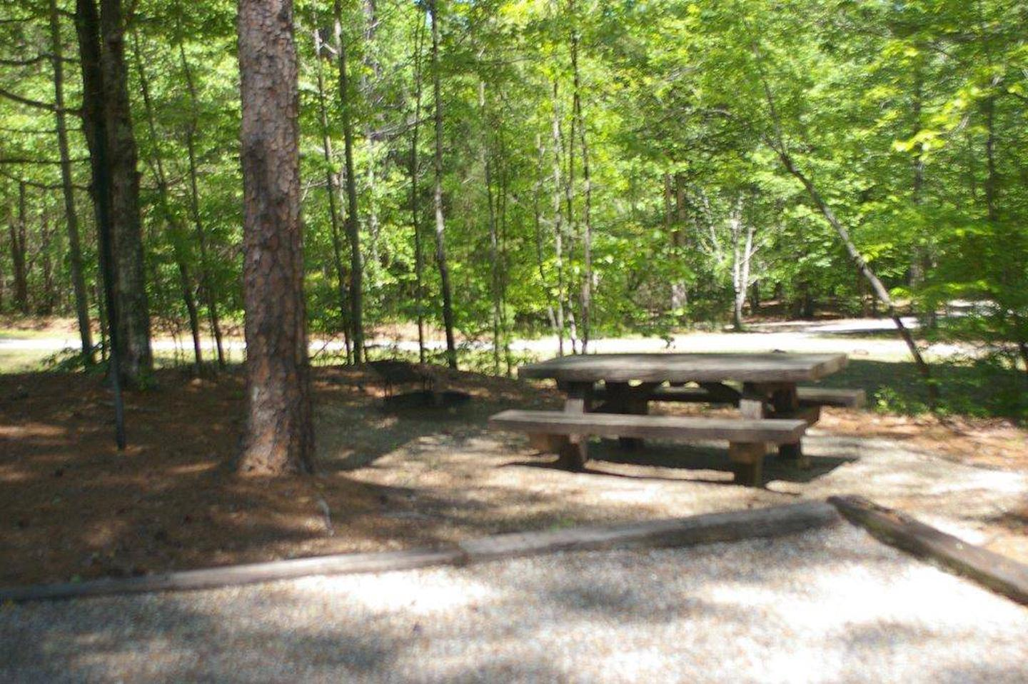 Lake Russell Rec Area  Site 17