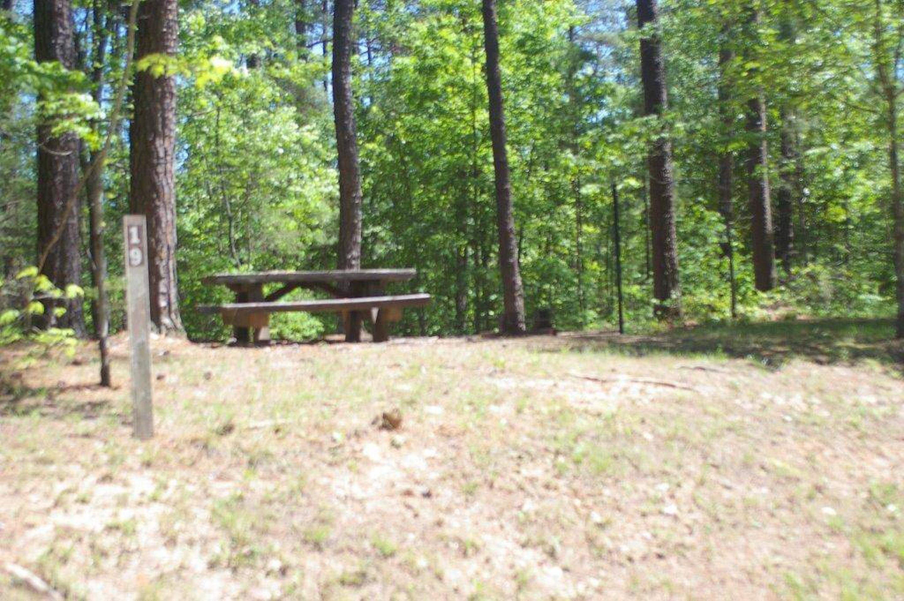 Lake Russell Rec Area  Site 19