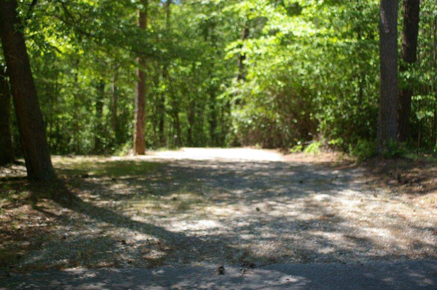 Lake Russell Rec Area  Site 20