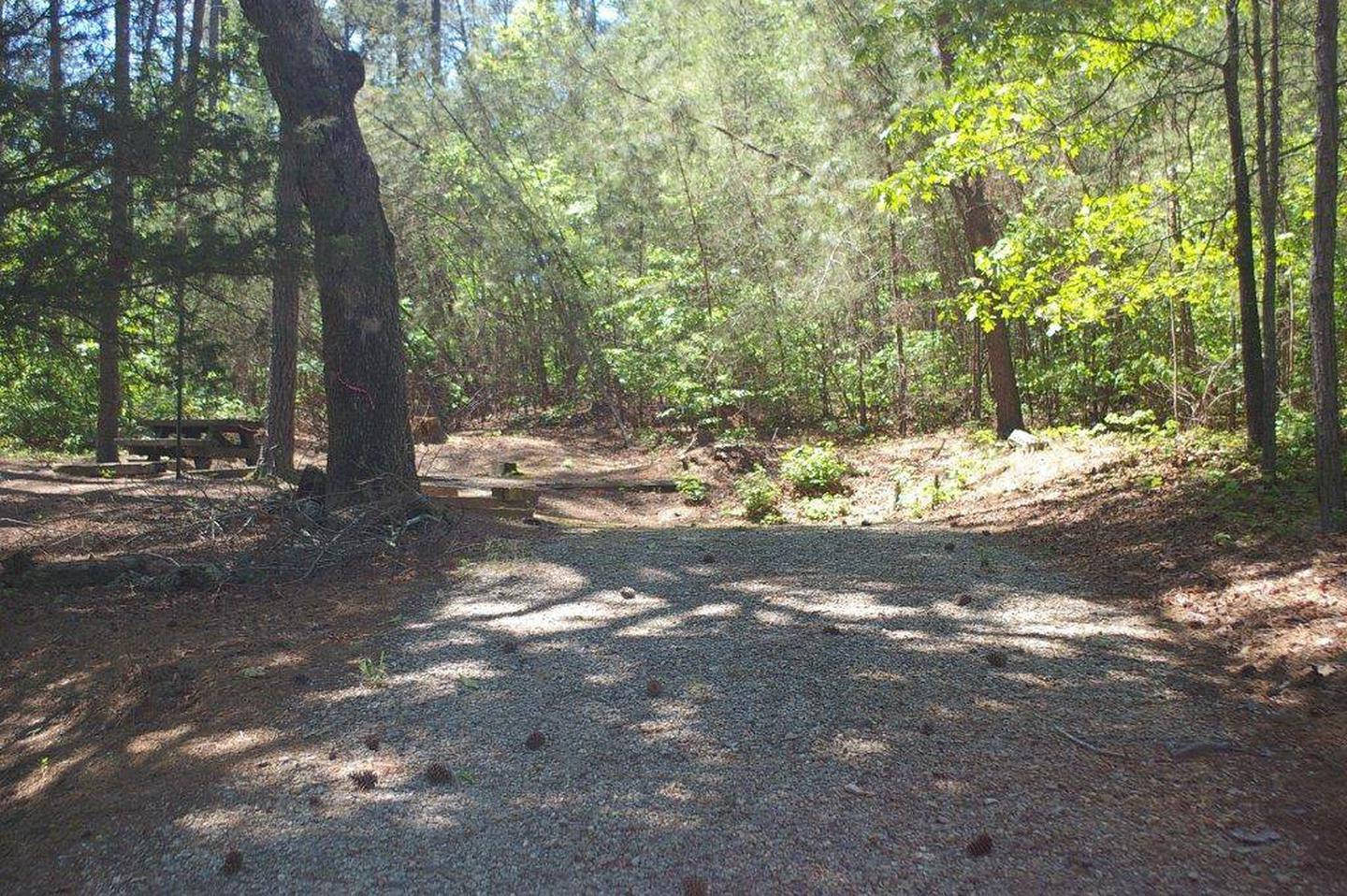 Lake Russell Rec Area  Site 23