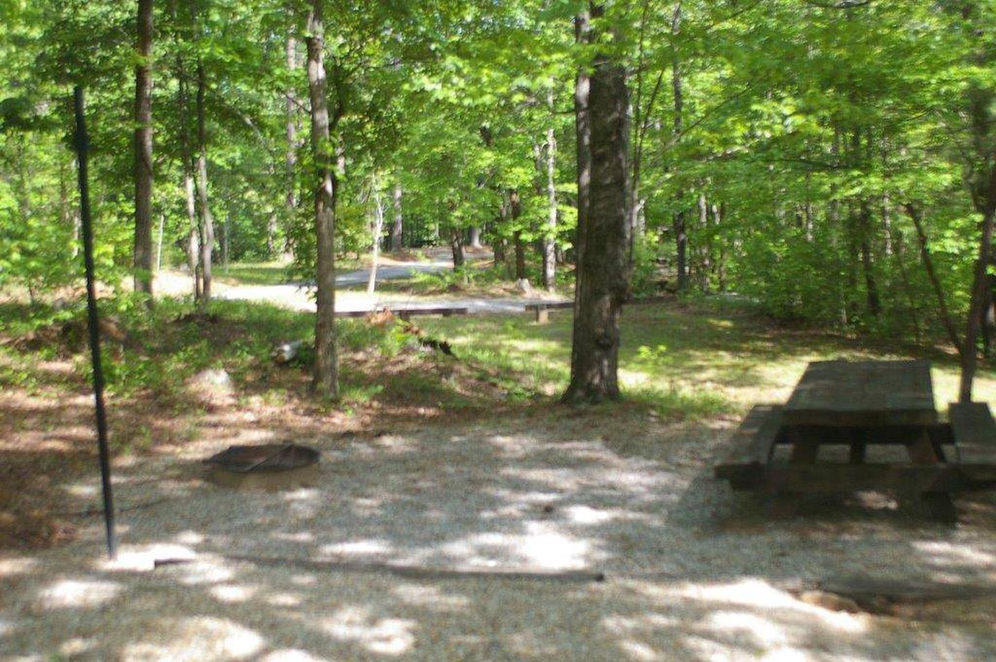 Lake Russell Rec Area  Site 40
