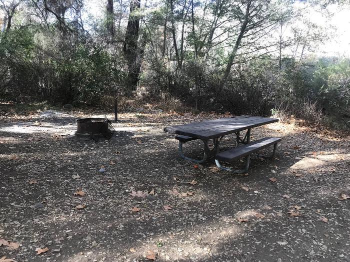 Nira Campground Site 1